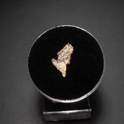 silver spinel batopilas