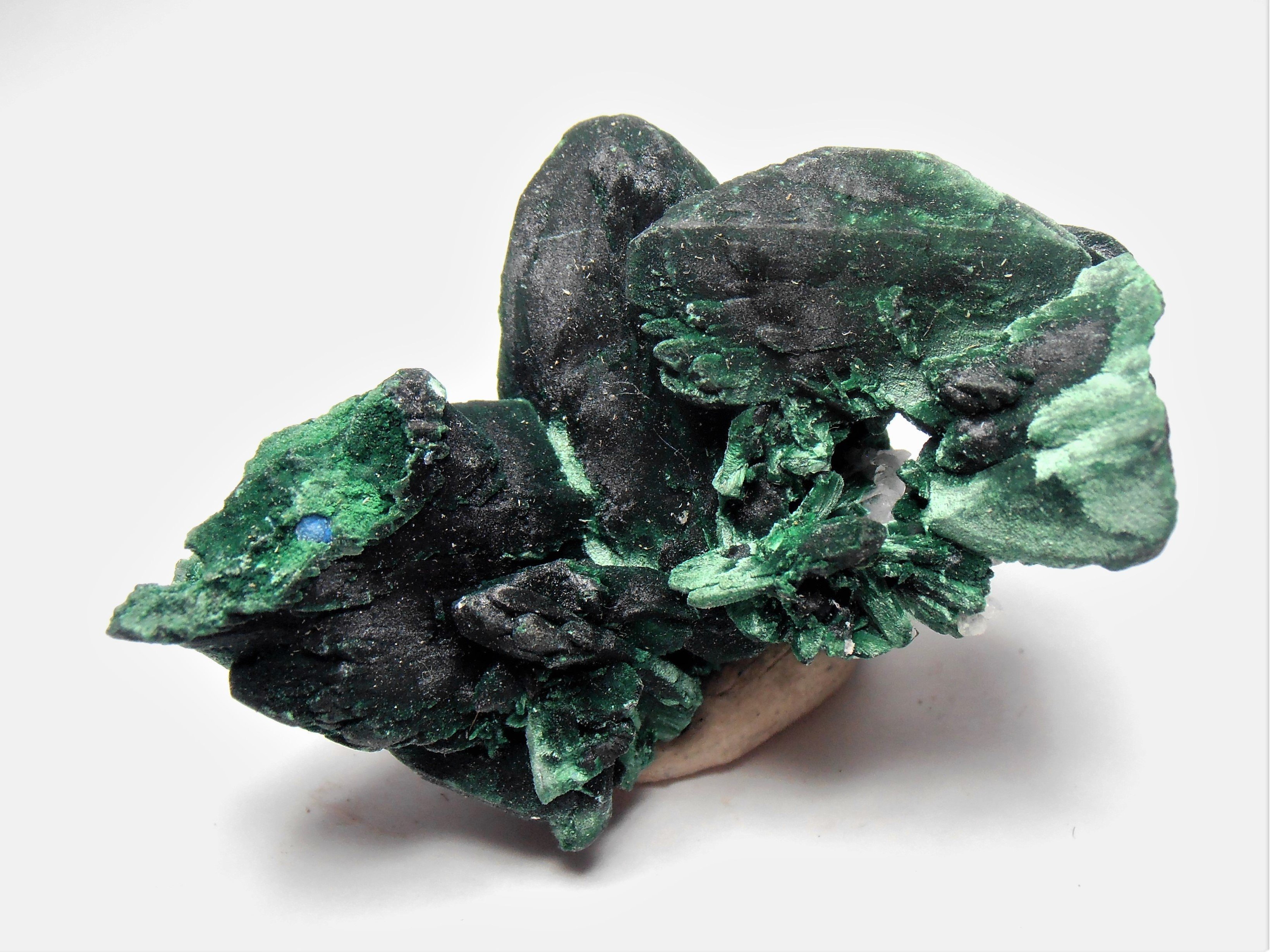 Malachite Pseudomorphs of Azurite from the Milpillas Mine