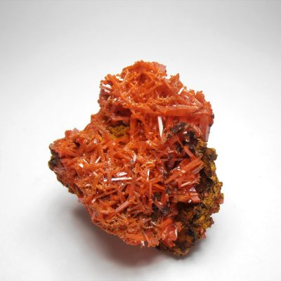 Crocoite Crystal Cluster from the Adelaide Mine, Dundas