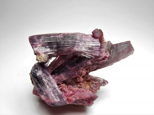 Tourmaline - from the Pedeneira Claim, Minas Gerais