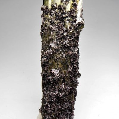 Tourmaline - 75 MM crystal with Lepidolite from Minas Gerais