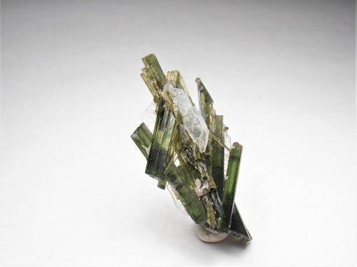 Tourmaline Crystal Cluster from the Cruzeiro Mine