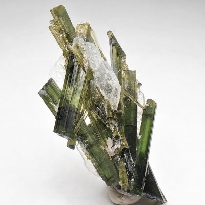 Tourmaline Crystal Cluster from the Cruzeiro Mine