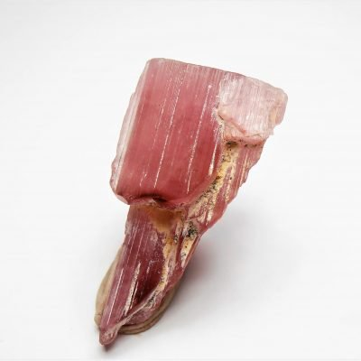 Elbaite Crystal - Variety Rubellite - Himalaya Mine