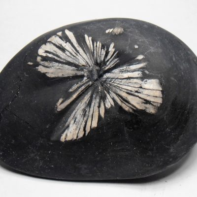 "Celestite Crystal ""Chrysanthemum Stone"" from the Hunan Province"
