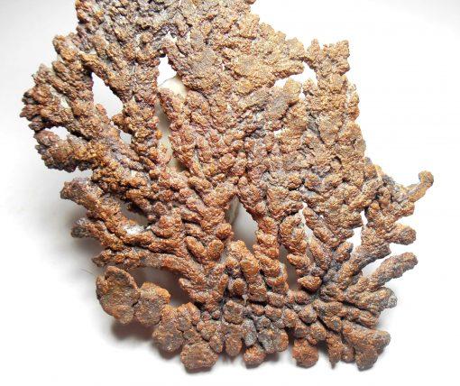 Copper Crystal Fan from Corocoro Mining District, La Paz